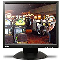 Orion Images Corp 19RTLB 19-Inch Basic LCD Monitor (Black)
