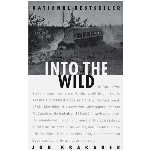 essays on the book into the wild