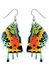 Real Sunset Moth Butterfly Wing Earrings