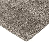 Amazon Basics Modern Plush Standard-Pile Shag Area
