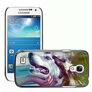 Super Stella Slim PC Hard Case Cover Skin Armor Shell Protection // M00103823 Husky Dog Love Street Animal Cute // Samsung Galaxy S4 Mini i9190