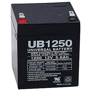 Amazon.com: UPG UB1250 Sealed Lead Acid Batteries: Home