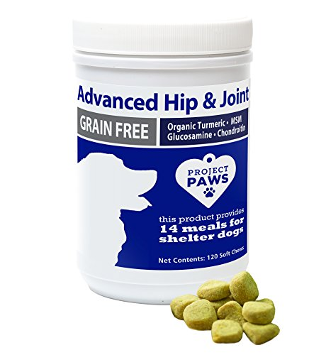 Project Paws Hip and Joint Supplement for Dogs - Dog Glucosamine Chews with MSM, Chondroitin and Organic Turmeric - 120 CT by Project Paws (Image #7)