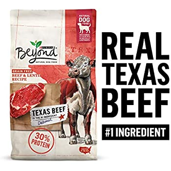 Purina Beyond Grain Free, Natural, High Protein Dry Dog Food, Texas Beef & Lentil Recipe - 3 lb. Bag