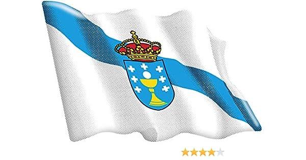 Amazon.es: Artimagen Pegatina Bandera Ondeante Galicia 65x50 mm. Resina