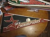2005 national League champions Houston Astros Pennant b1