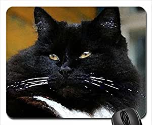 Black Cat Mouse Pad, Mousepad (Cats Mouse Pad, 10.2 x 8.3 x 0.12 inches)