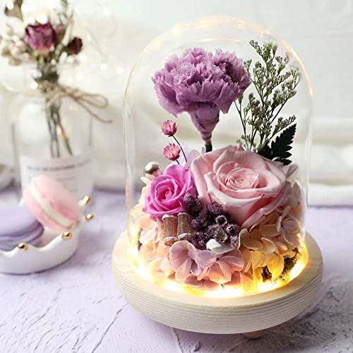 Amoleya Preserved Purple Carnation Flowers Preserved Pink Rose in a Glass Doom LED Light on a Base