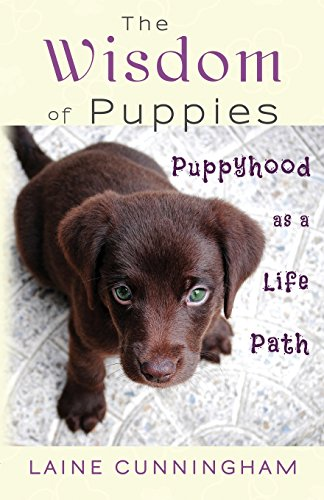 The Wisdom of Puppies: Puppyhood as a Life Path (Wisdom for Life) Beagle Springer Spaniel