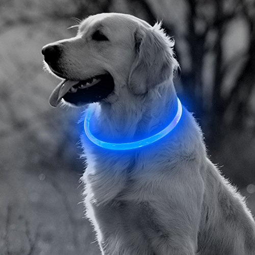 BSEEN LED Dog Collar, USB Rechargeable Glowing Pet Collar, TPU Cuttable Dog Safety Lights for Small Medium Large Dogs (Blue)