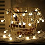 Danslesbls LED Globe String Lights Fairy Twinkle Waterproof Light String with & 43Ft 100 LED Warm, Perfect for Indoor and Outdoor Use with 30V Low Voltage Transformer (Plug)