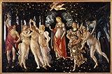Sandro Botticelli La Primavera 25.62 X 17.02 Canvas Wall Art