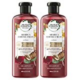 Herbal Essences, Shampoo, BioRenew Arabica Coffee Fruit, 13.5 fl oz, Twin Pack