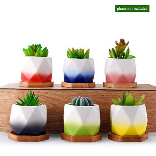 Ceramic Succulent Planter Pot Set Flower Cactus Holder Unique Color Glaze White Container Kit with Bamboo Tray for Home Decor Perfect Gift Idea by Homenote (1 Pack of 6)