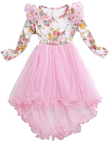 Toddler Dress Little Girls Clothes Long Sleeve high Low Pink Flower Party Dress for Little Girls Dresses Size 6 Princess Dress