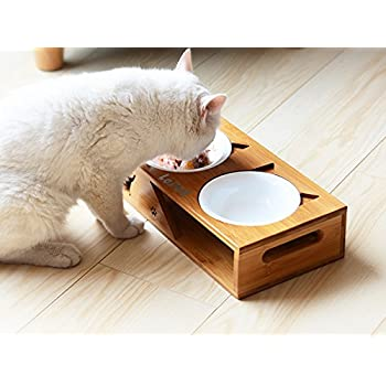 Amazon.com : LePet Elevated Dog Cat Bowls, Raised Pet
