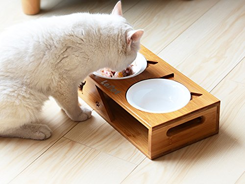 Bamboo Cat Water Bowl (LePet Elevated Dog Cat Bowls, Raised Pet Feeder Solid Bamboo Stand 2 Ceramic bowls and 2 Stainless Steel bowls Perfect for Cats and Small Dogs(Plane))