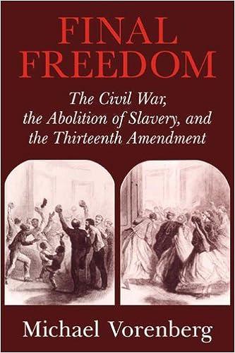 Pre civil war sex slaves book
