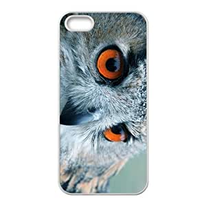 Nigh Owl Hight Quality Plastic Case for Iphone 5s