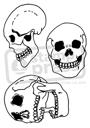 Amazon Com Azeeda A6 Collection Of Skulls Unmounted Rubber Stamp