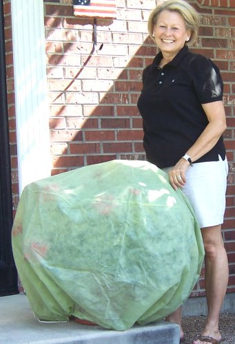 Frost Protek Plant Cover - Large - Garden Fabric for Protection and Insulation by Frost Protek