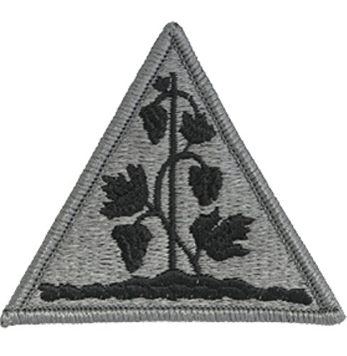 - Connecticut National Guard ACU Patch - Foliage Green