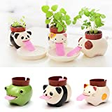 The pink tongue is connected to their plant's pot, and laps up water from the tray to feed the plant on their back. Available in 4 types - Frog planter for Basil Seed, Dog planter for Mint Seed, Cat planter for Clover Seed, Panda planter for ...
