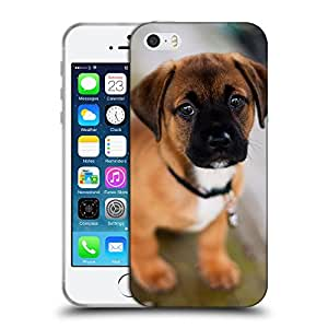 Super Galaxy Coque de Protection TPU Silicone Case pour // V00000837 Patrón del perro de perrito // Apple iPhone 5 5S 5G SE