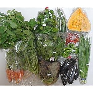 【産地直送】くり坊農園 自然栽培 元氣野菜セットL(農薬・肥料不使用/約7~10品目)