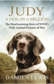 Haatchi Little B The Inspiring True Story Of One Boy And His - One boy dog heart warming