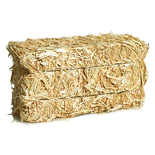 (TCDesignerProducts Large Straw Bale Halloween and Thanksgiving Decoration Made of Straw, 20 in. and 9 in. and 8 in.)