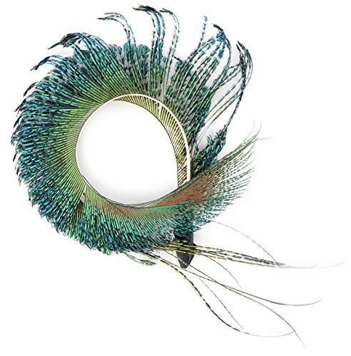 ZUCKER Peacock Sword Feather Corsage - Flapper Fascinator Hair Accessory Hat Trim - Natural Multi-Colored Curled Pin from Zucker Feather Products