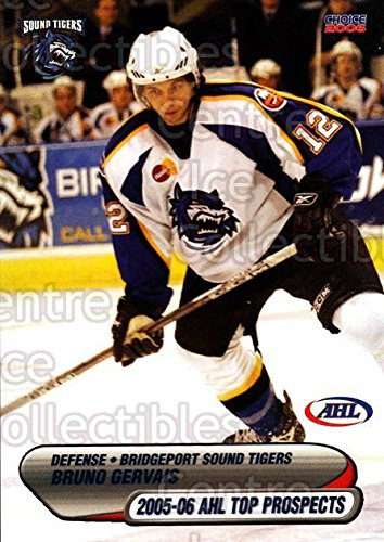 Top Hockey Prospects ((CI) Bruno Gervais Hockey Card 2005-06 AHL Top Prospects 16 Bruno Gervais)