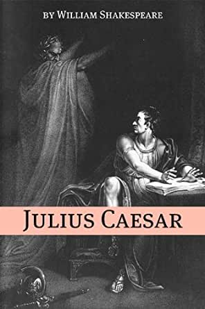Romantic Critics and the Bard Essay