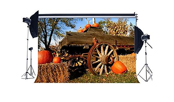 Wofawofa Vinyl 10X10FT Straw Haystack Backdrop Autumn Harvest Farmland Backdrops Wheat Field Dutch Windmill Blue Sky White Cloud Photography Background for Thanksgiving Day Photo Studio Props KX735