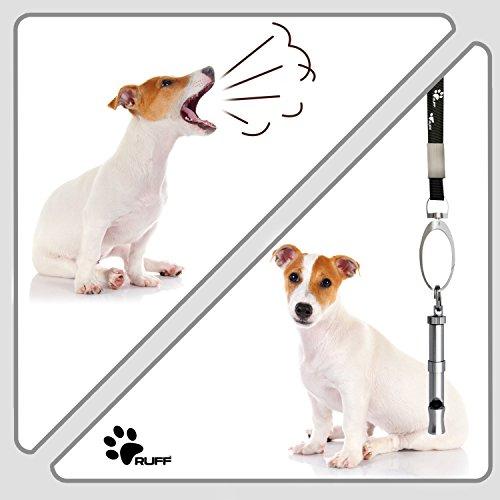 RUFF RUFFDW1 Dog whistle Bundle with Lanyard, Presentation Box and 5 Dog Training ebooks