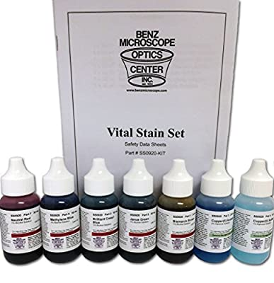 Benz Microscope Slide Stains Vital Stain Kit - 7 Bottle Set, 6 Different Stains for Microscope Slides