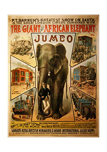 Spiffing Prints Jumbo Circus Elephant - Extra Large - Matte - Framed
