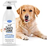 SKOUT'S HONOR Professional Strength, All-Natural Pet Patio Cleaner & Deodorizer - Non-Toxic, Biodegradable, and Eco-Friendly - Concrete, Outdoor Stone & Artificial Turf Cleaner