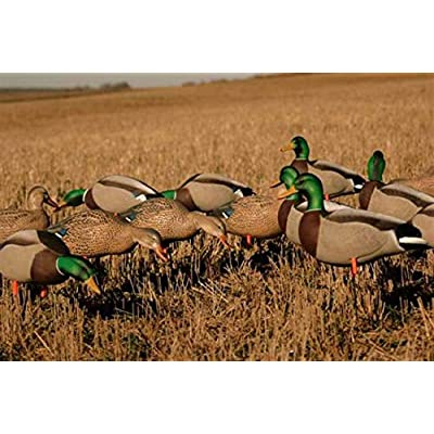 Image of Avery Hunting Gear Roger's Field Pack W12 Slot Bag- New Feeders&Actives Decoys