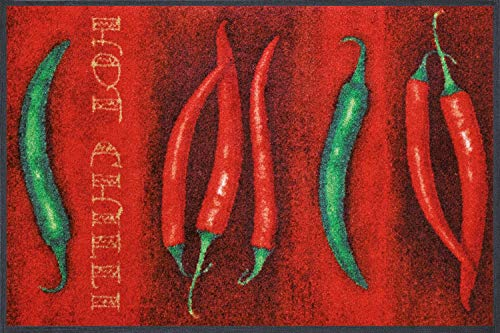 Studio 67 Fun Door Mat - Machine Washable with Non Slip Rubber Backing - 2.5' x 1.6' - Chili Peppers