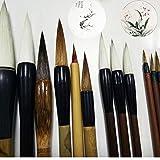 Unmengii 12 PCs New Line Drawing Art Tool Writing Brush Calligraphy Pen Brushwork Chinese Painting Set