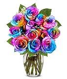 Flowers - Two Dozen Wild Rainbow Roses (Free Vase Included)