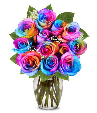 From You Flowers - One Dozen Wild Rainbow Roses (Free Vase Included)