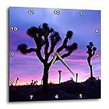 3dRose USA, California, Joshua Tree National Park at sunrise. – Wall Clock, 13 by 13-Inch (dpp_206726_2)