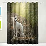 White Swiss Shepherd Dog Looking Back Blackout Curtain Top Insulation Compartment Bedroom Living Room Children's Room 55W x 84L Inches, 2 Panels 7