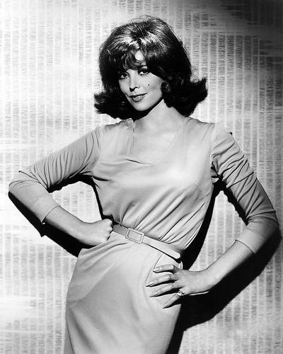 Tina Louise 8x10 Promotional Photograph Ginger from Gilligan's Island glamour pose ()