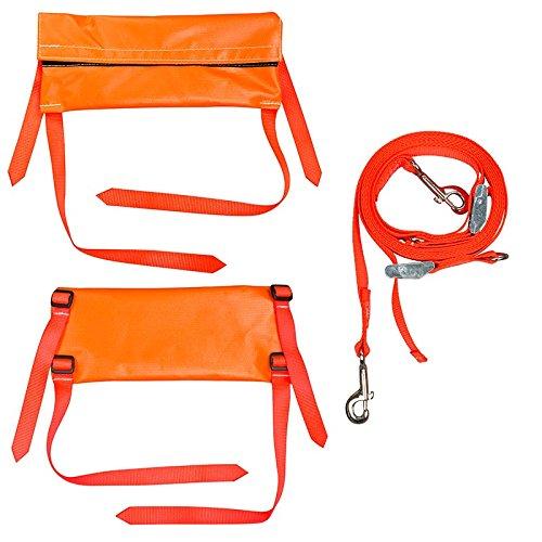 Buckingham 355T BUCK LADDER LOCK, Ladder safety restraint system, Nylon Web Straps, Ladder (Pack of 2)