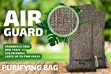 AirGuard - Reusable Odor And Moisture Filter With Natural Activated Zeolite rocks, Eco Friendly Air Purifying Bag, Eliminates Odor, Prevents Mold, Germs And Mildew, Repels Smell (Zeolite, 150g)
