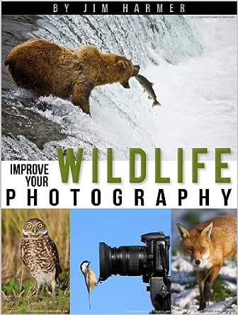 Amazon.com: Improve Your Wildlife Photography (Improve
